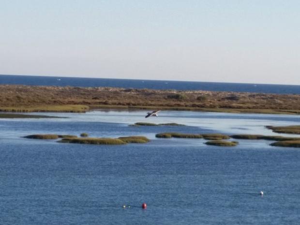 Algarve - Naturschutzgebiet Ria Formosa