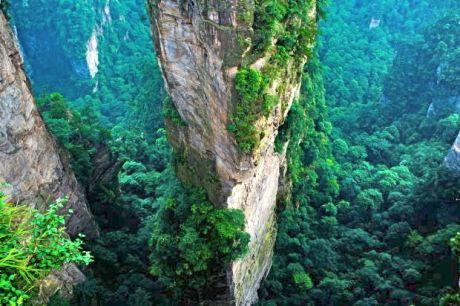 avatar national park, china