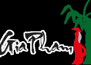 Gia Pham