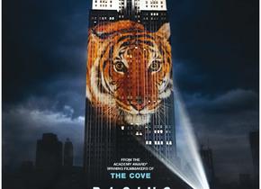 Der nachhaltige Filmtipp: Freightened