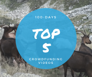 Top 5 Crowdfunding Videos