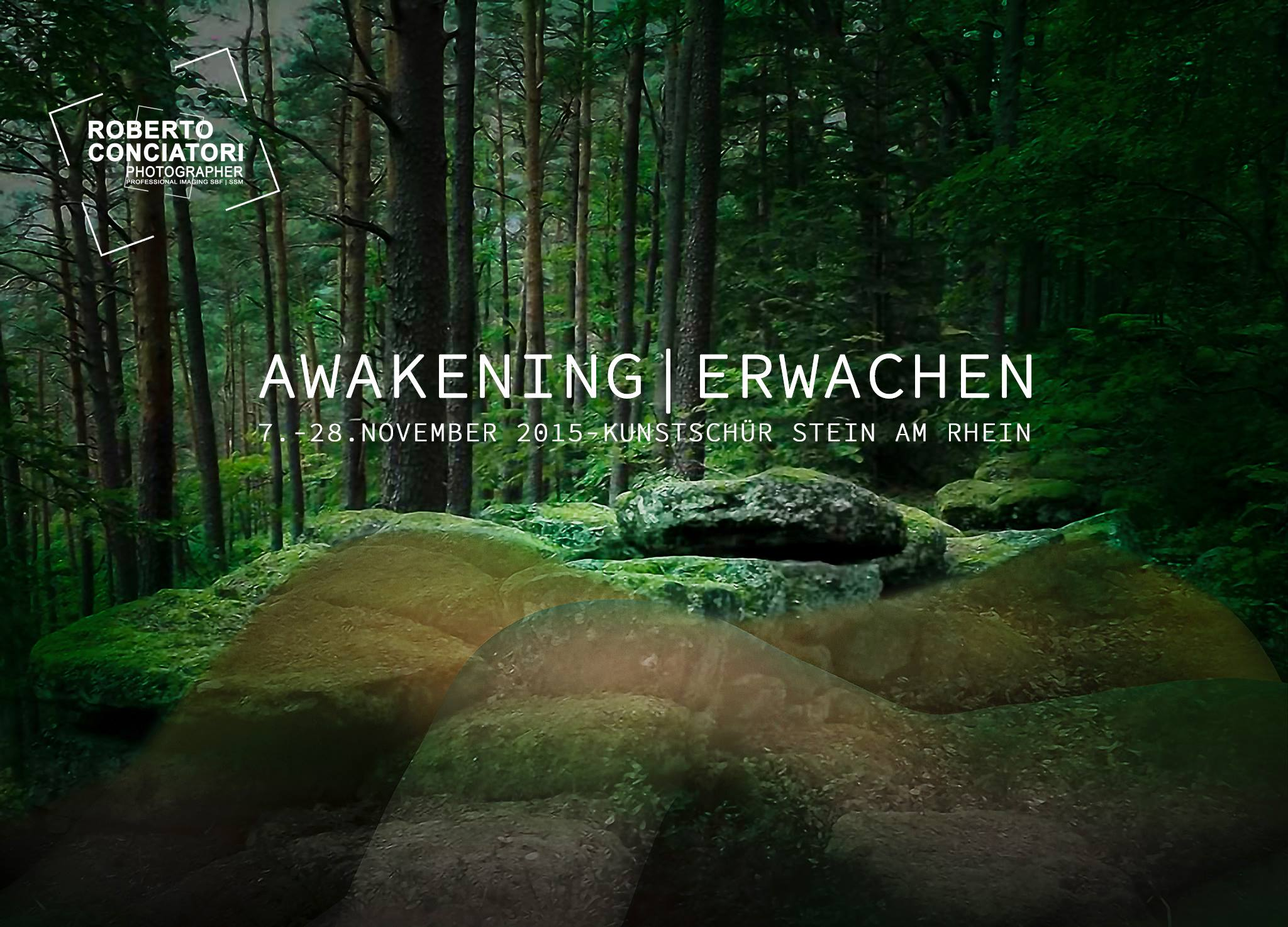 AWAKENING   ERWACHEN